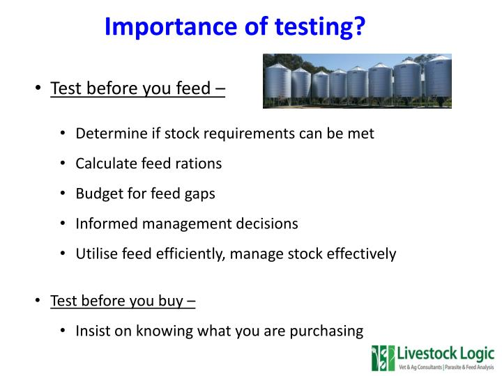 Importance of testing?