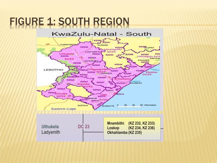 FIGURE 1: South region