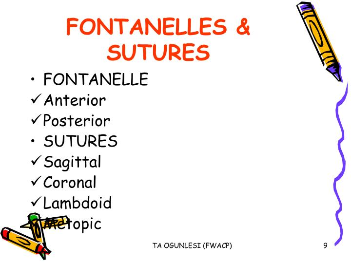 FONTANELLES & SUTURES
