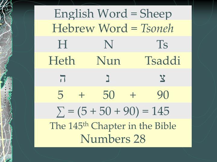 English Word = Sheep