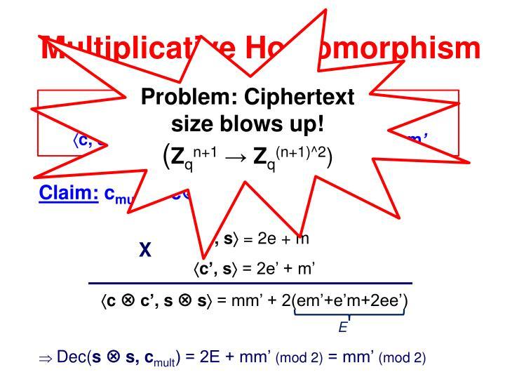 Problem: Ciphertext size blows up!