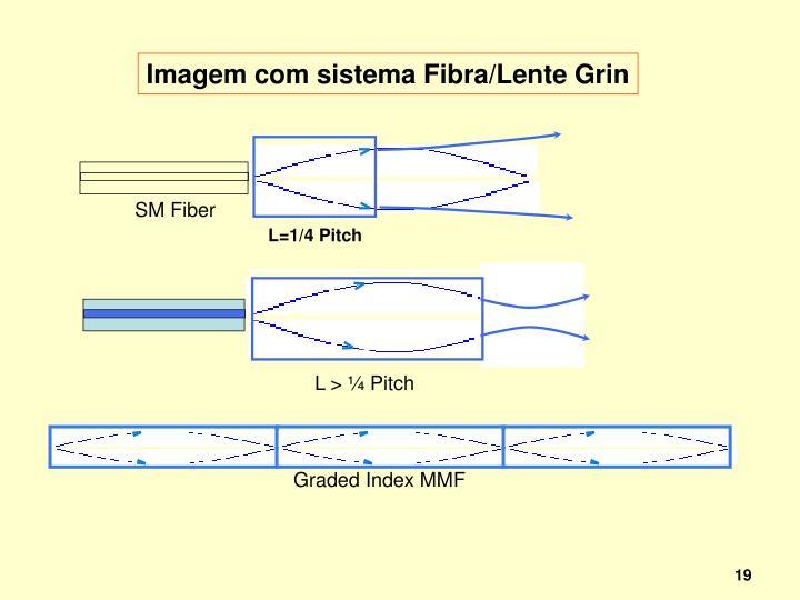 SM Fiber