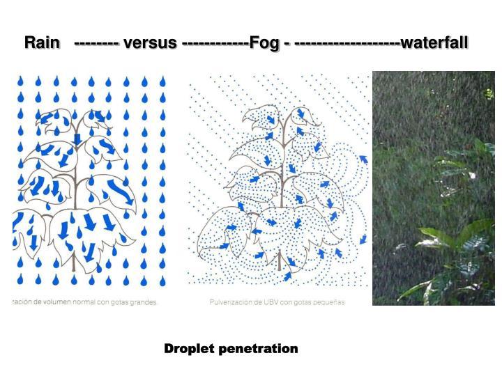 Rain   -------- versus ------------