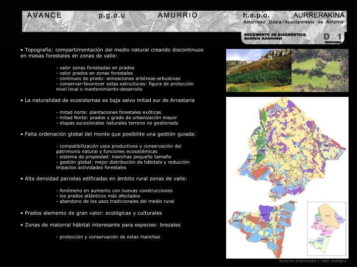 Topografía: compartimentación del medio natural creando discontinuos en masas forestales en zonas de valle: