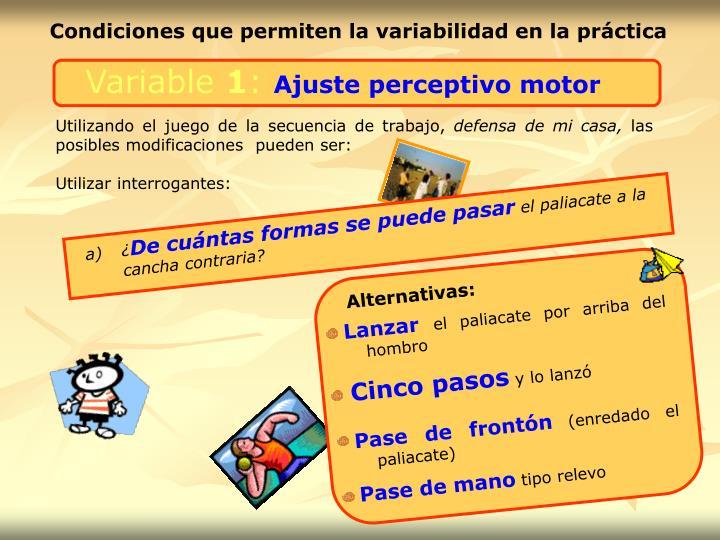 Condiciones que permiten la variabilidad en la práctica
