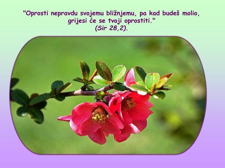 """""""Oprosti nepravdu svojemu blinjemu, pa kad bude molio, grijesi e se tvoji oprostiti."""""""