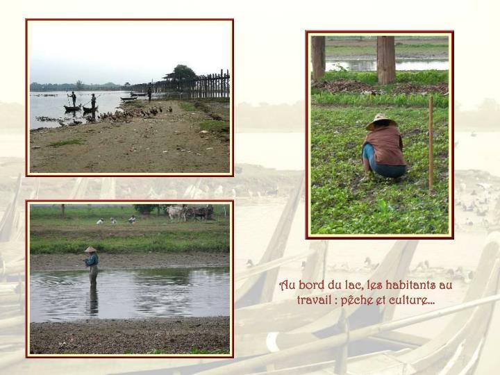 Au bord du lac, les habitants au travail : pêche et culture…