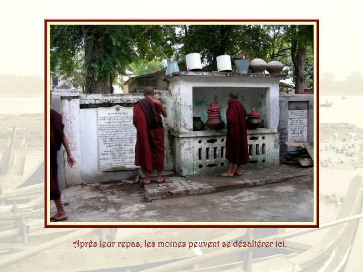 Après leur repas, les moines peuvent se désaltérer ici.