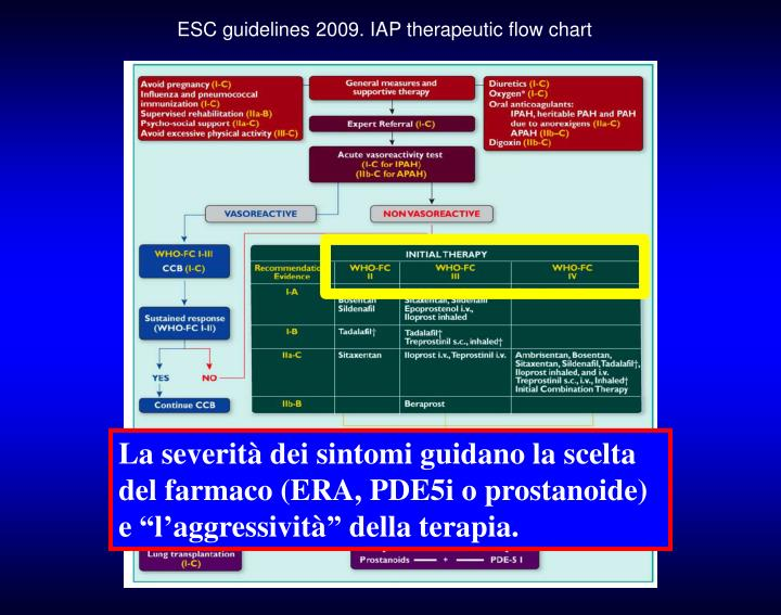 ESC guidelines 2009. IAP therapeutic flow chart
