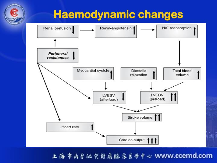Haemodynamic changes