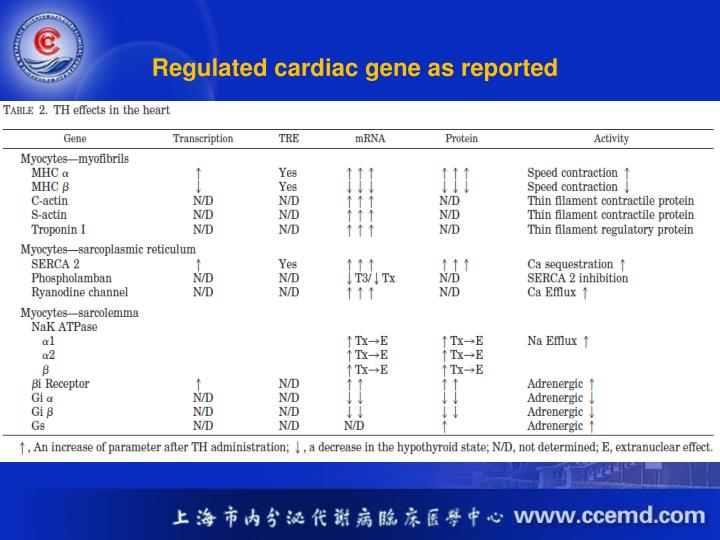 Regulated cardiac gene as reported