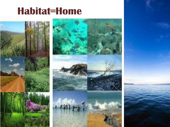 Habitat=Home