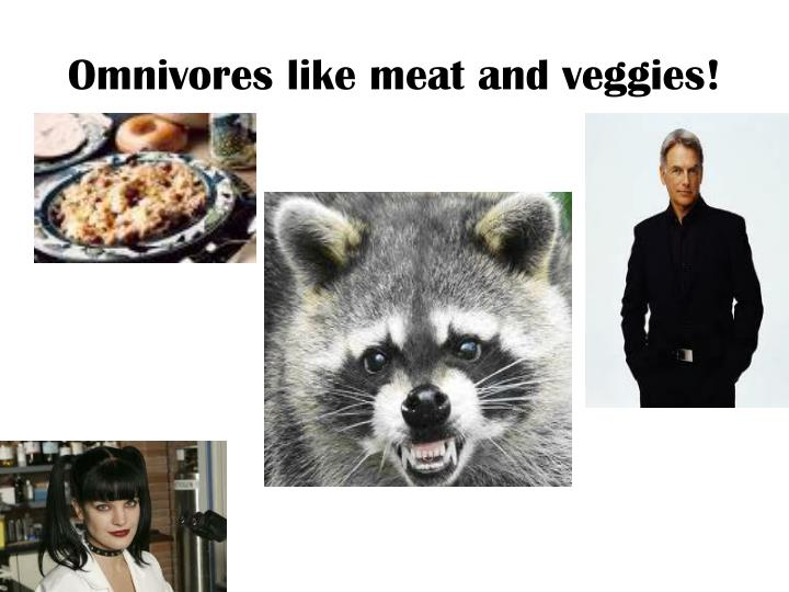 Omnivores like meat and veggies!