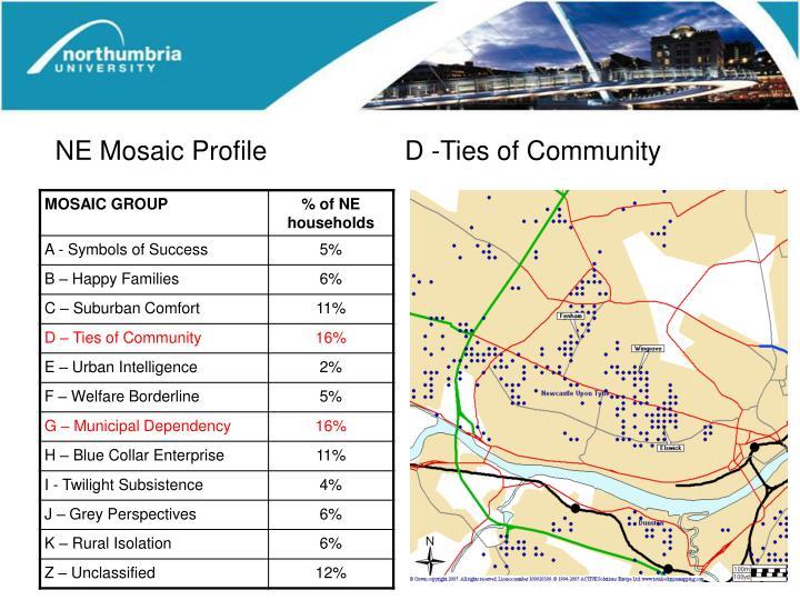 NE Mosaic Profile    D -Ties of Community