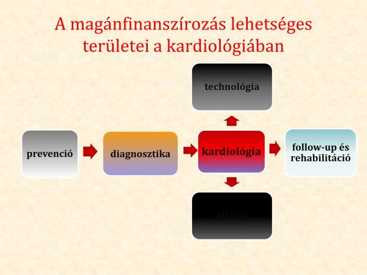 A magánfinanszírozás lehetséges területei a kardiológiában
