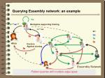 querying essembly network an example