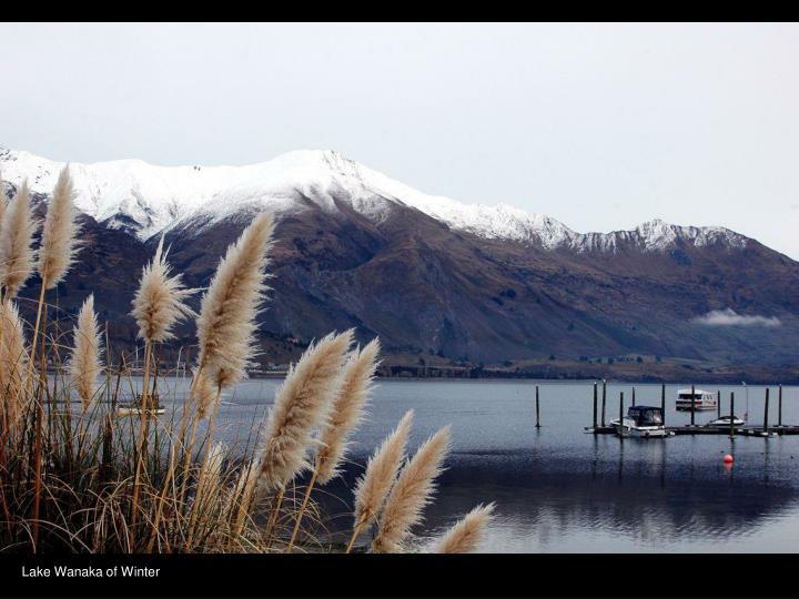 Lake Wanaka of Winter