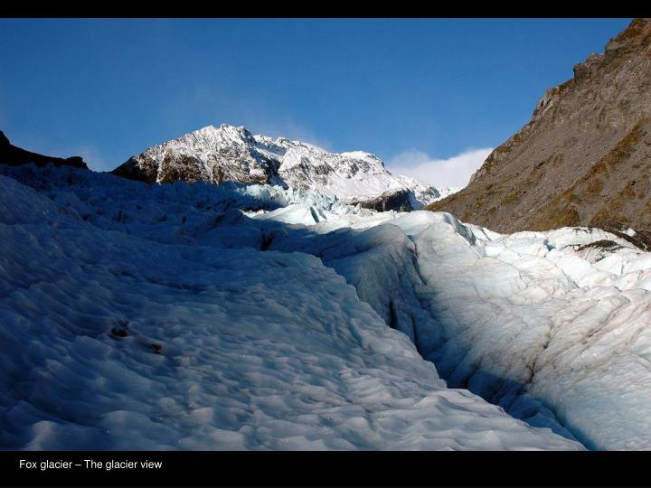 Fox glacier – The glacier view