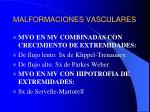 malformaciones vasculares14