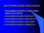 malformaciones vasculares5