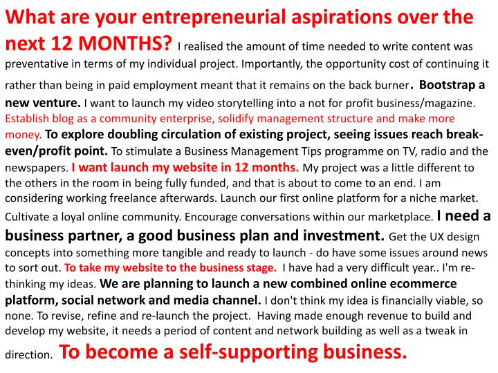 What are your entrepreneurial aspirations over the next 12 MONTHS
