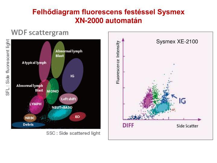 Felhődiagram fluorescens festéssel Sysmex