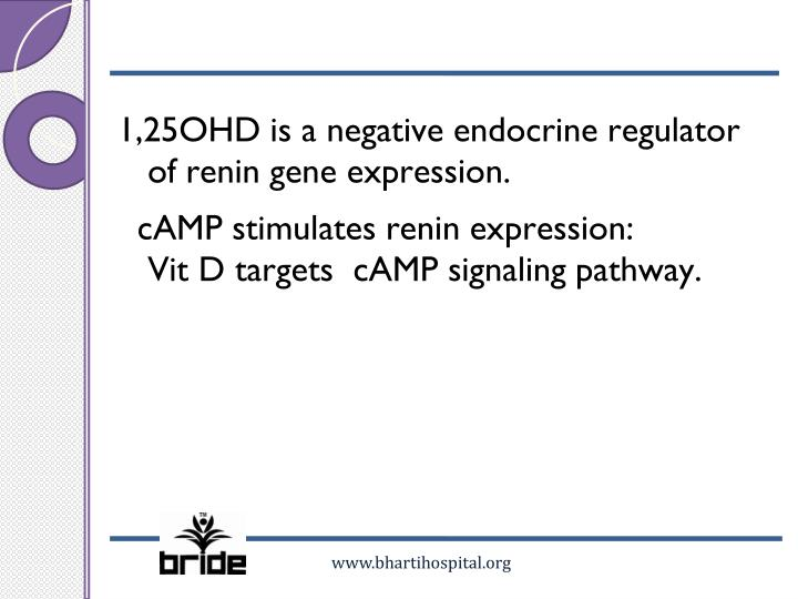 1,25OHD is a negative endocrine regulator of renin gene expression.