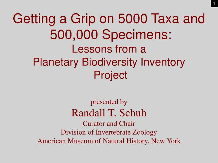 Getting a grip on 5000 taxa and 500 000 specimens lessons from a