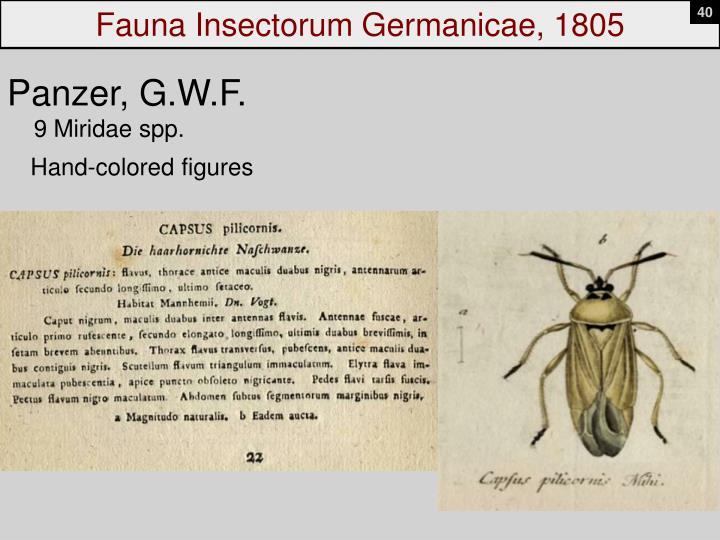 Fauna Insectorum Germanicae, 1805