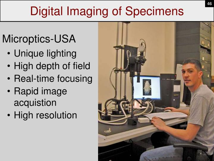 Digital Imaging of Specimens