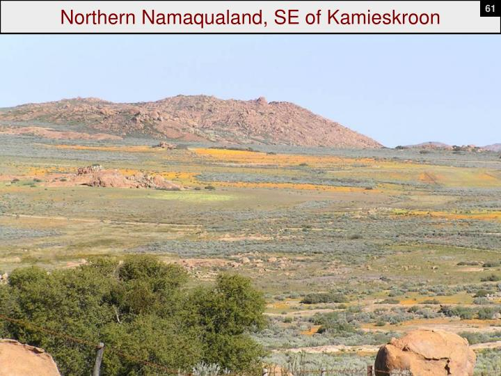Northern Namaqualand, SE of Kamieskroon