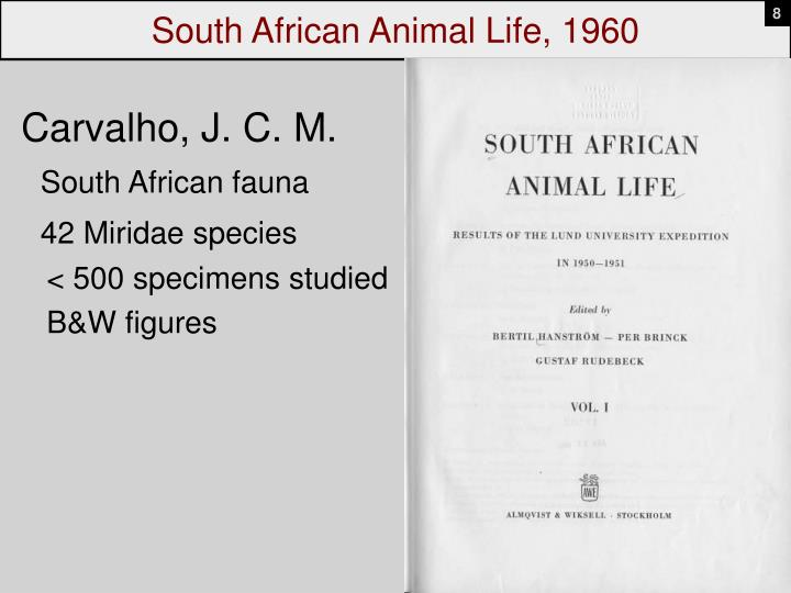 South African Animal Life, 1960