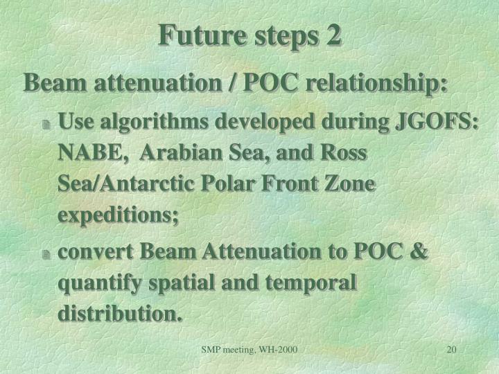 Future steps 2