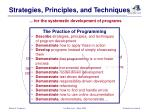 strategies principles and techniques