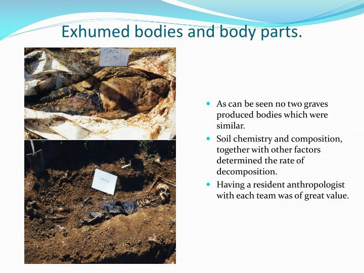 Exhumed bodies and body parts.