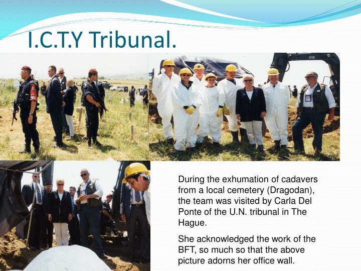 I.C.T.Y Tribunal.