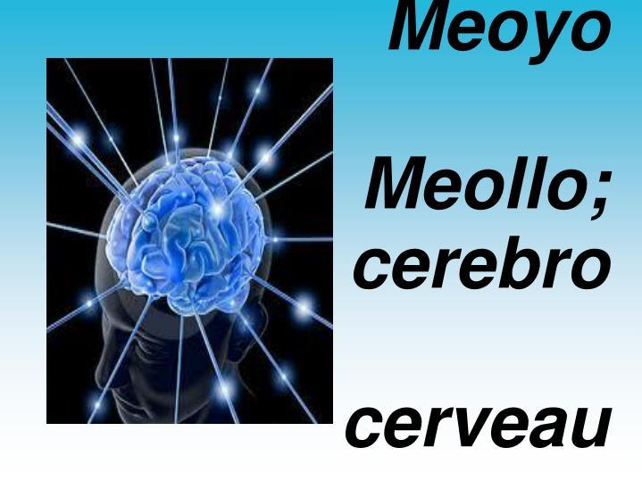 Meoyo