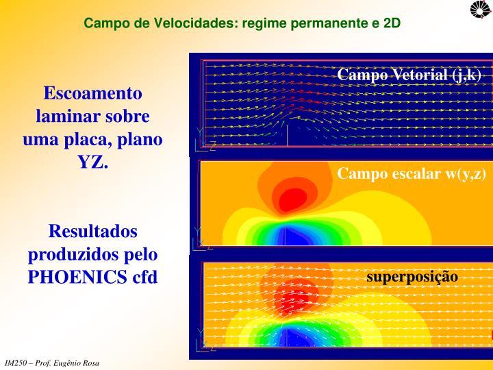 Campo de Velocidades: regime permanente e 2D