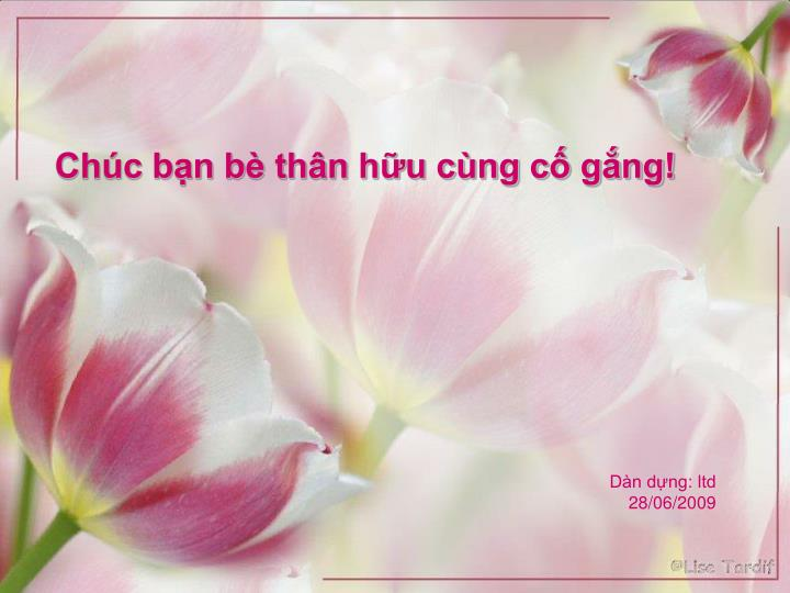 Chc bn b thn hu cng c gng!