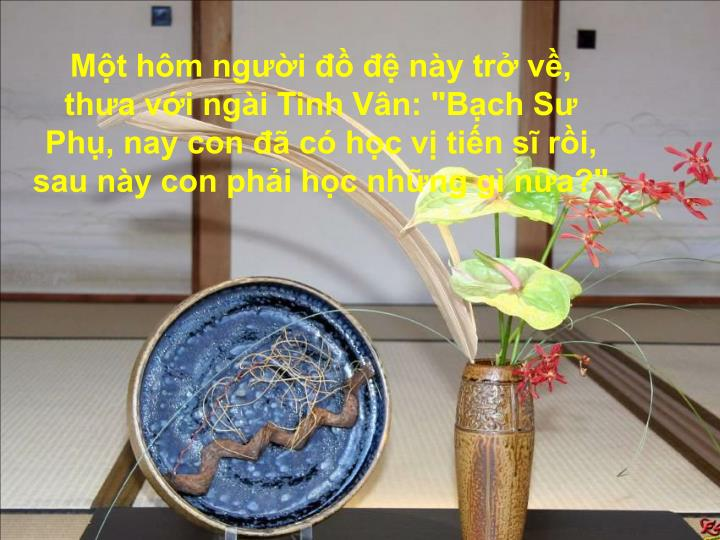 "Mt hm ngi   ny tr v, tha vi ngi Tinh Vn: ""Bch S Ph, nay con  c hc v tin s ri, sau ny con phi hc nhng g na?"""
