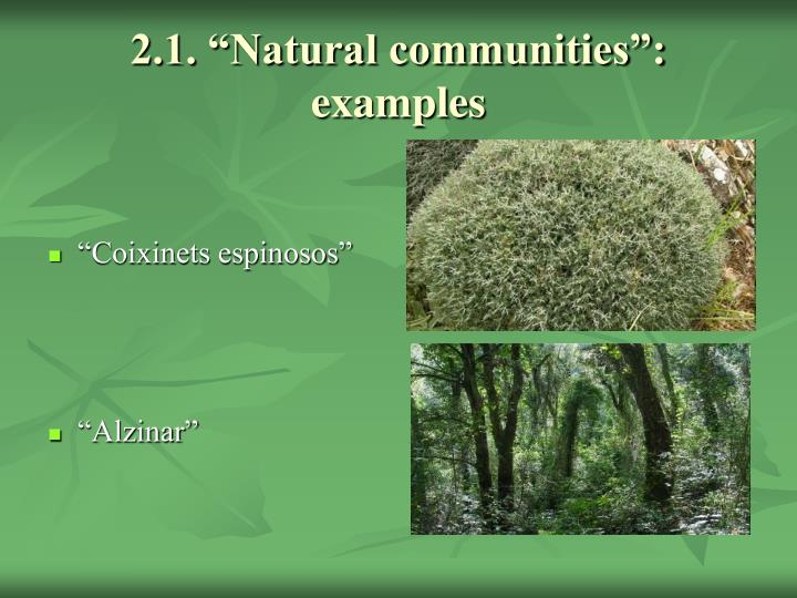 "2.1. ""Natural communities"": examples"