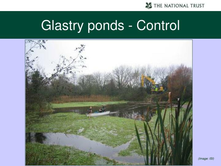 Glastry ponds - Control