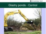 glastry ponds control4