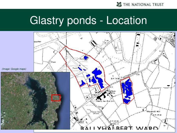 Glastry ponds - Location