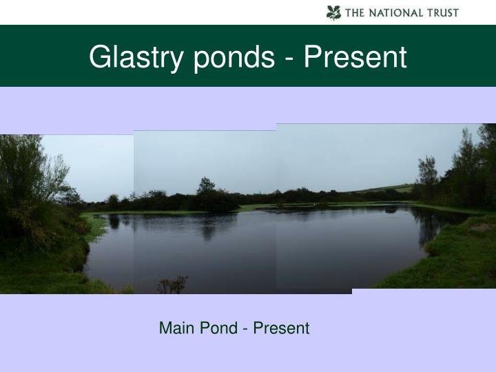 Glastry ponds - Present