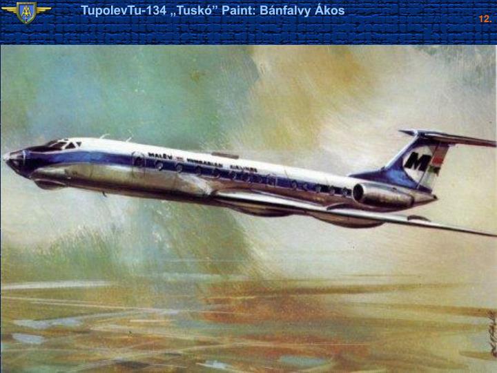 """TupolevTu-134 """"Tuskó"""" Paint: Bánfalvy Ákos"""