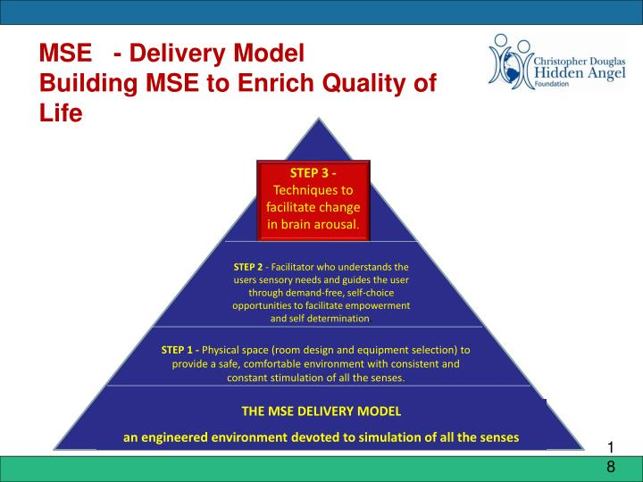 MSE   - Delivery Model