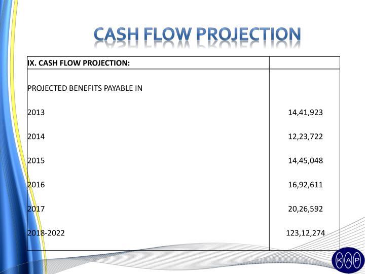 Cash flow projection