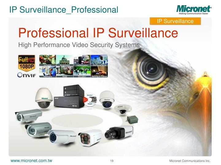 IP Surveillance_Professional
