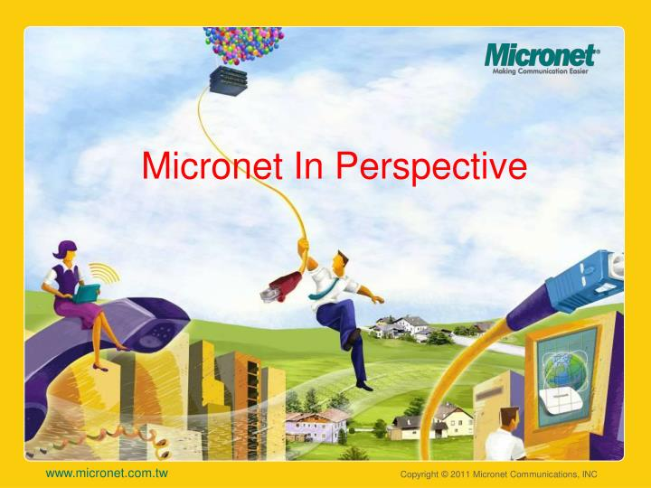 Micronet in perspective